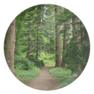 Plato Paseo del bosque, montañas, Escocia