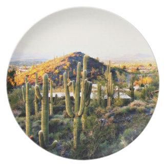 Plato Placa de encargo de la melamina del paisaje de la