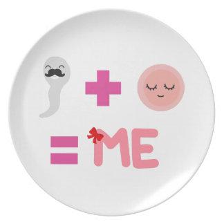 Plato Placa de la melamina del proceso de nacimiento
