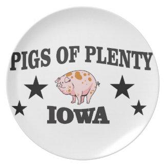 Plato pp Iowa