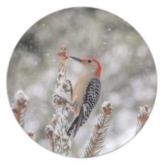 Plato pulsación de corriente Rojo-hinchada en la nieve