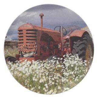 Plato Tractor VIEJO oxidado del vintage