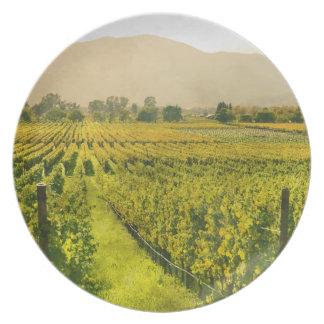 Plato Viñedo en otoño en Napa Valley California