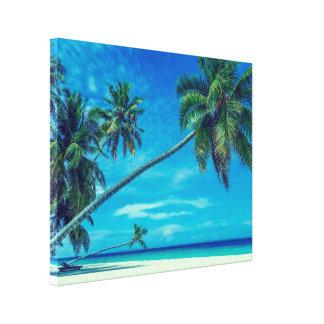 Playa blanca de Sandy con las palmeras tropicales Lienzo