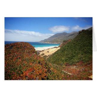 Playa de Garrapata Tarjeta De Felicitación