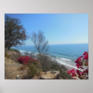 Playa de Summerland cerca de Santa Barbara Póster