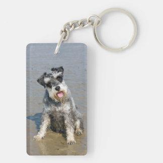 Playa hermosa linda de la foto del perro miniatura llavero rectangular acrílico a doble cara