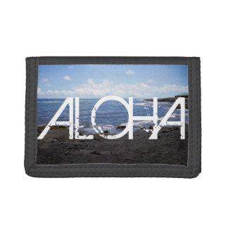 Playa negra Hawaii de la arena de Punalu'u de la