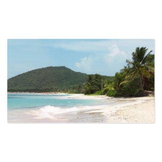 Playa Puerto Rico del flamenco de Culebra Tarjetas Personales