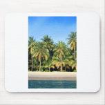 Playa tropical abandonada de la isla alfombrilla de ratones