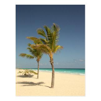 Playa tropical de la República Dominicana Postal