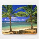 playa tropical tapetes de raton