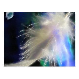 Pluma del ángel, postal