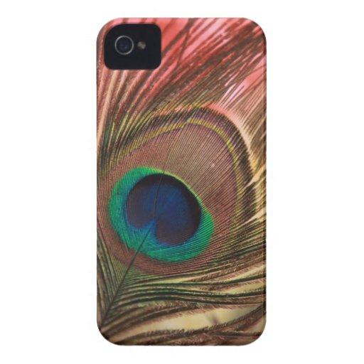 Pluma del pavo real iPhone 4 Case-Mate protector