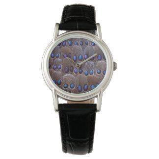 Pluma manchada azul del faisán reloj de pulsera