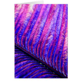 Pluma violeta tarjeta de felicitación