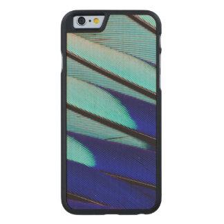 plumas Azul-hinchadas del rodillo Funda De Arce Para iPhone 6 De Carved