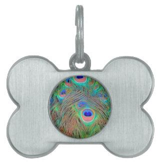 Plumas coloridas brillantes del pavo real placa para mascotas