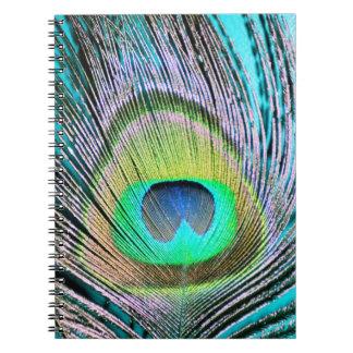 Plumas del pavo real en la turquesa libro de apuntes con espiral