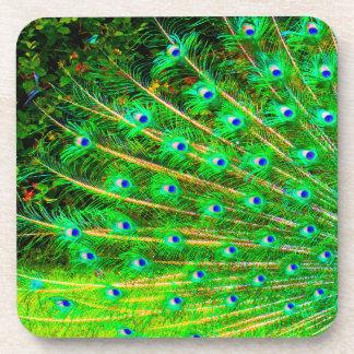 Plumas del pavo real portavasos