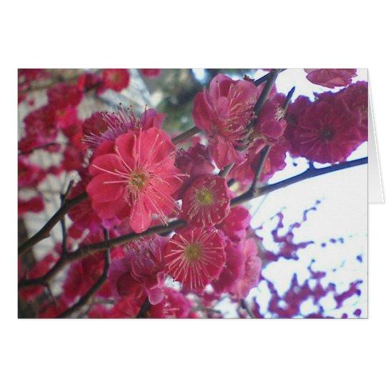 plumblossom tarjeta de felicitación
