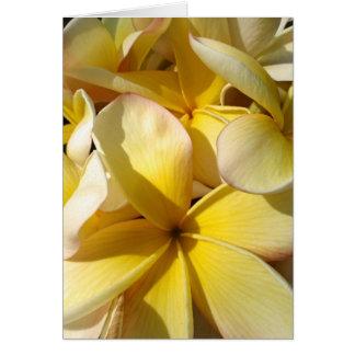 Plumeria amarillo hawaiano tarjeta de felicitación