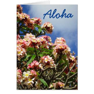 Plumeria de la hawaiana tarjeta