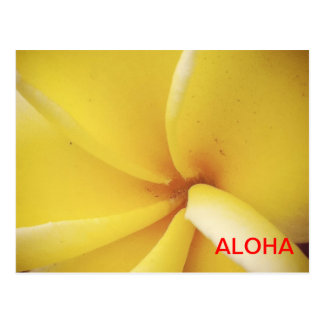 Plumeria de la hawaiana postal