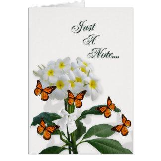 Plumeria en blanco y mariposas de la tarjeta de