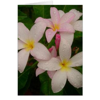 Plumeria en la lluvia tarjeta pequeña