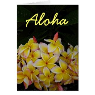 Plumeria hawaiano de la hawaiana tarjeta de felicitación