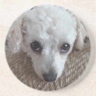 Poco perro de caniche blanco de la taza de té posavasos diseño