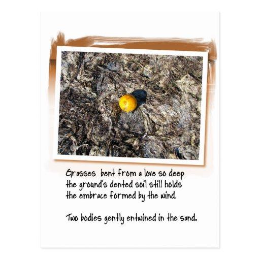 Poema del amor y naranja varado tarjetas postales