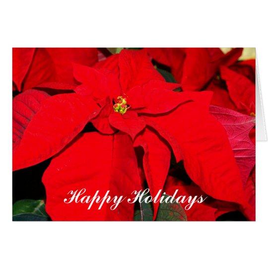 Poinsettia, buenas fiestas tarjeta de felicitación