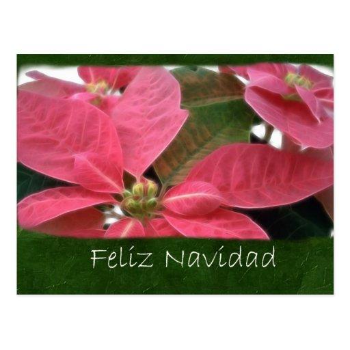 Poinsettias rosados 3 - Feliz Navidad Tarjeta Postal