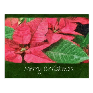 Poinsettias rosados 4 Painterly - Felices Navidad Postal