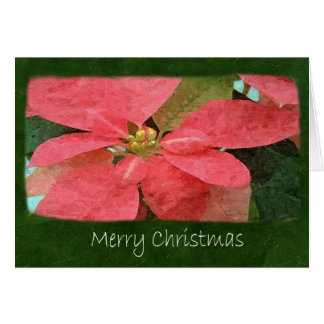 Poinsettias rosados 5 - Felices Navidad Tarjeta De Felicitación