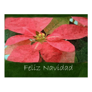 Poinsettias rosados 5 - Feliz Navidad Postal