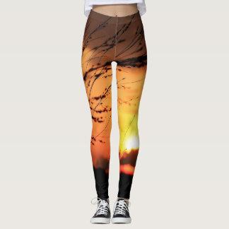 Polainas de la puesta del sol leggings