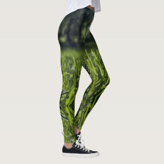 Polainas del campo de hierba verde leggings