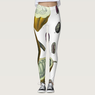 Polainas del ejemplo del vintage del grano de leggings