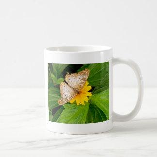 polilla blanca amarilla de la mariposa taza de café