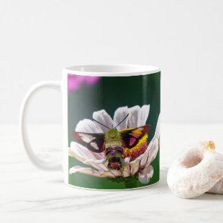Polilla de colibrí taza de café