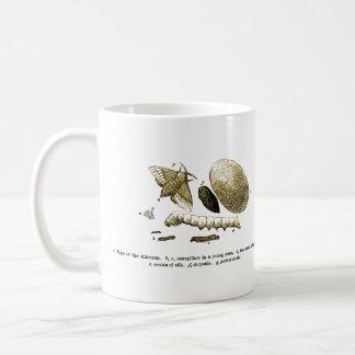 Polilla del gusano de seda el | de la imagen el | taza de café