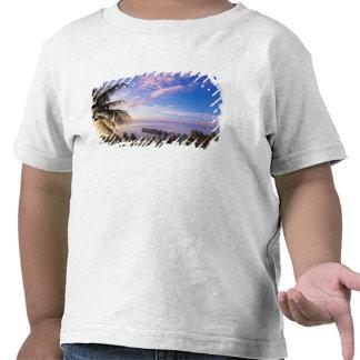 Polinesia francesa, Moorea. Vista del Baie de Camiseta