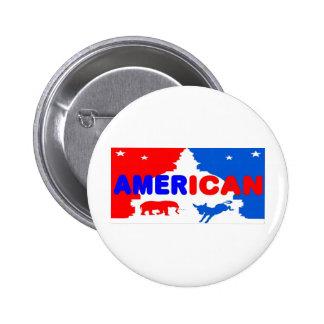 Política americana pin