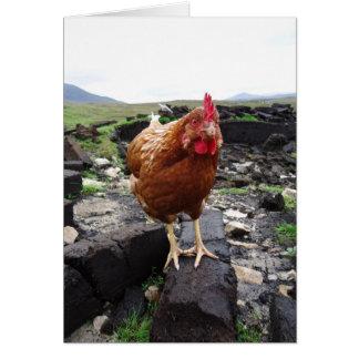 Pollo del césped, Irlanda Tarjeta