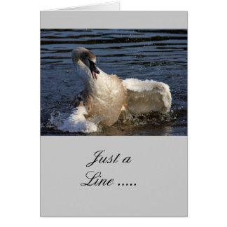 Pollo del cisne loco tarjeta de felicitación