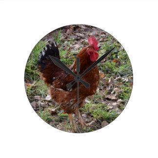 Pollo Reloj De Pared