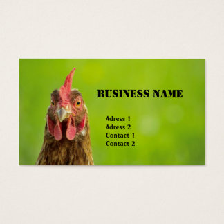 Pollo - tarjeta de visita